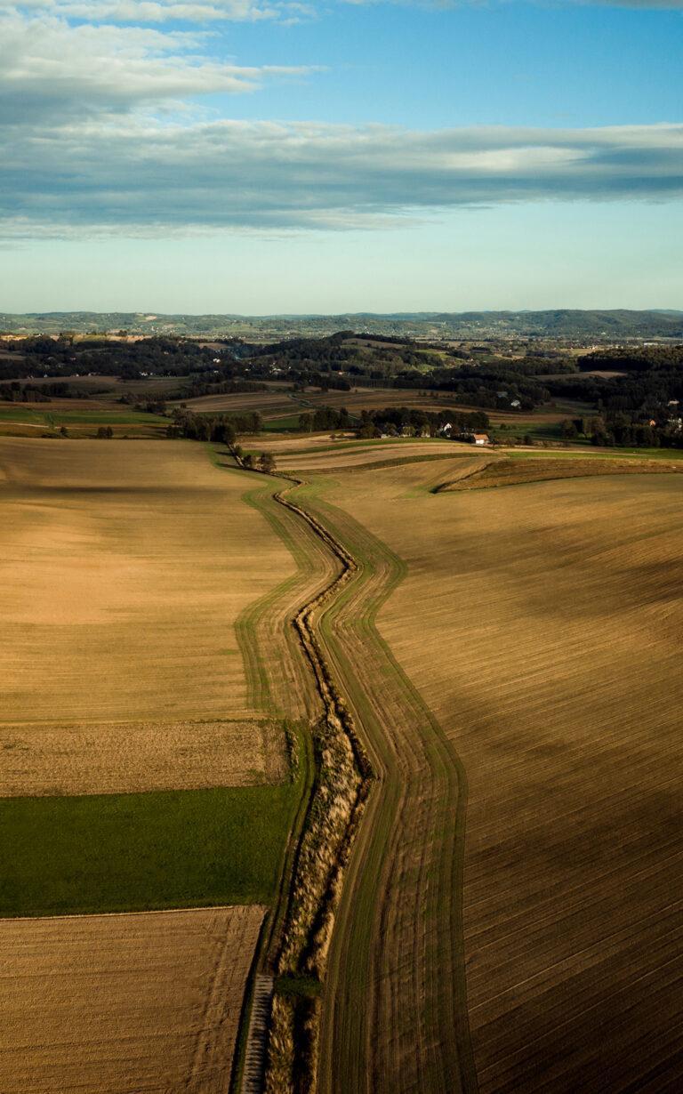 pola i łąki w małopolsce